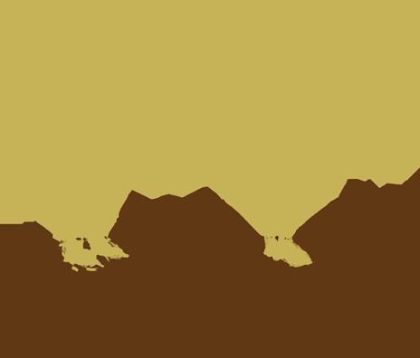 RiG-bull-bg